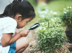 Cute asian little child girl looking through a magnifying glass on the tree in the garden